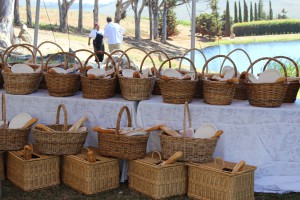 Anna Picnic baskets
