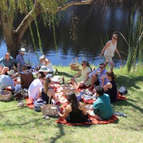 Picture Purrrfect Picnic – part 2