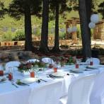 La Pineta 'under the pines'
