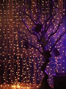 Ell Wish tree1