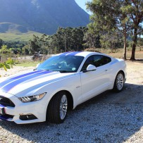 Mustang Sally ~ Hermanus Intimate Wedding