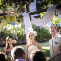Proteas and Promises ~ Hermanus Wedding