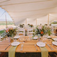 Country Love ~ Beaumont near Hermanus Wedding