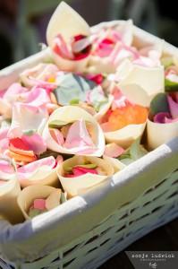M&A Wedding - 00176
